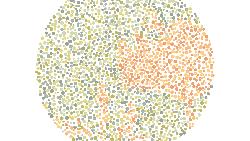 Tes buta warna kali ini mengharuskan kamu menebak siluet gambar yang tersusun dari beberapa objek. Bisakah kamu melihat semuanya?