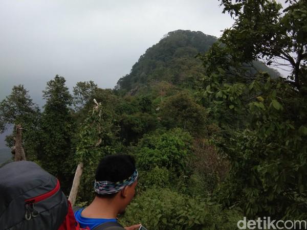 Jalur pendakian Gunung Lembu tergolong pendek yang terdiri dari 3 pos. Waktu tempuhnya sekitar 3 jam bagi pendaki pemula. (Idris/detikTravel)