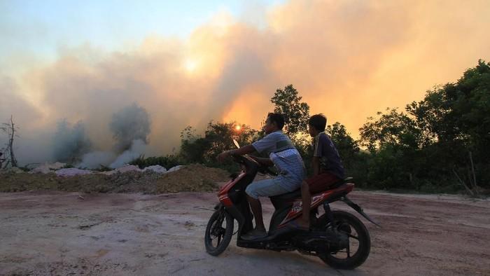Ilustrasi kebakaran hutan dan lahan (Foto: AntaraFOTO)