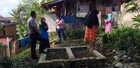 Heboh Tanaman 'Ganja' Muncul di Makam Tua Sukabumi