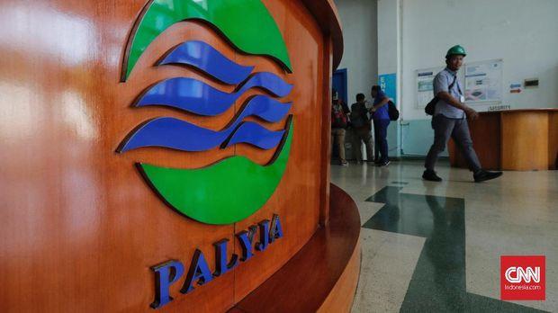 Logo Palyja.