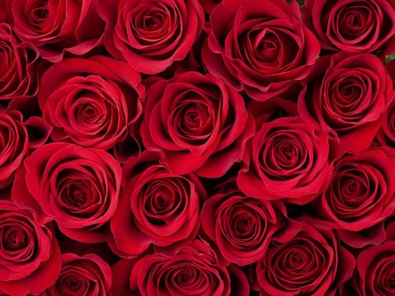 10 Fakta Hari Valentine yang Jarang Diketahui Orang