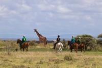 Ada banyak aktivitas wisata di Loisaba Conservancy, seperti naik kuda menjelajahi padang savana (Loisaba Conservancy/Facebook)