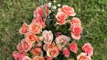 Viral, Pria Beri Kekasihnya Kado Valentine Buket Bunga dari Uang Rp 31 Juta