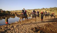 Aktivitas wisata di Loisaba Conservancy (Loisaba Conservancy/Facebook)