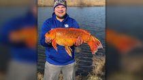 Pakai Biskuit Sebagai Umpan, Pria Ini Dapat Ikan Seberat 9 Kilogram