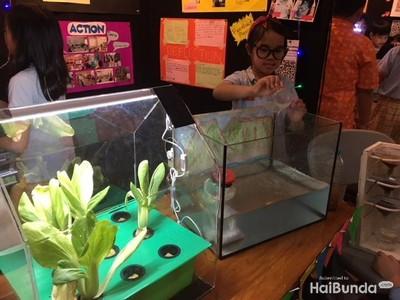 Intip Karya Keren Anak SD Berbasis Sains di PYP Exhibition