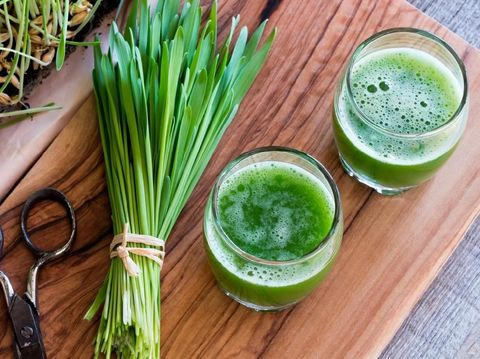 Two shots of barley grass juice with freshly harvested barley grass, top view
