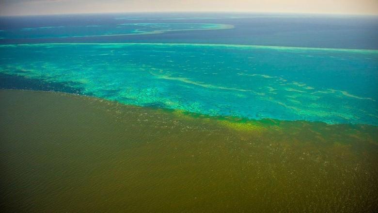 Air Keruh dari Banjir di Australia Menyelimuti Great Barrier Reef