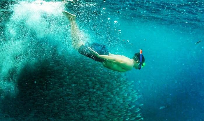 Salah satu spot menyelam yang pernah dikunjunginya adalah Raja Ampat yang terletak di Papua Barat. (dok. pribadi Tommy Tjokro)