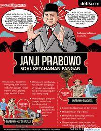 Janji Prabowo soal Ketahanan Pangan