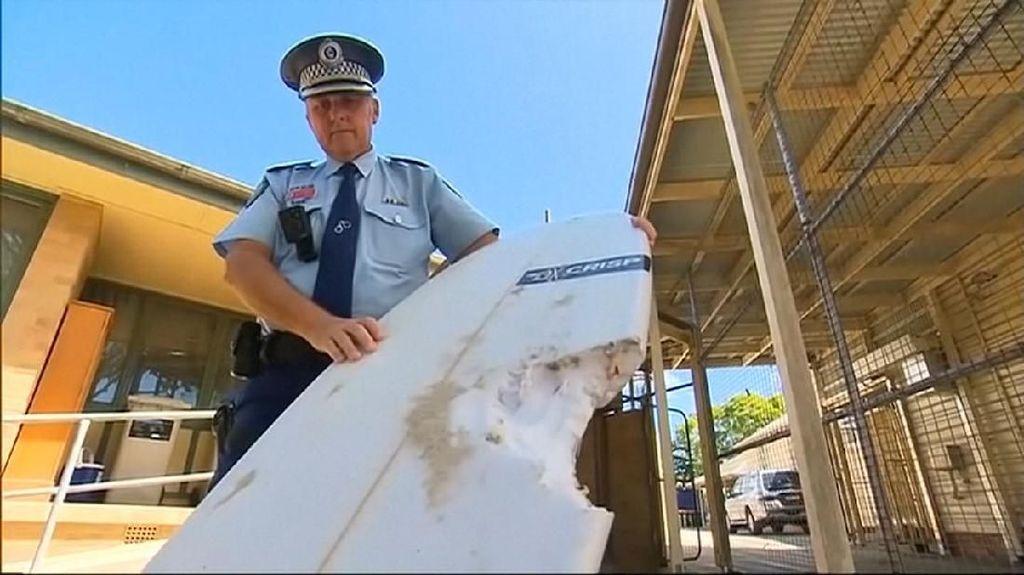 Diserang Hiu, Peselancar di Australia Kehilangan Kaki