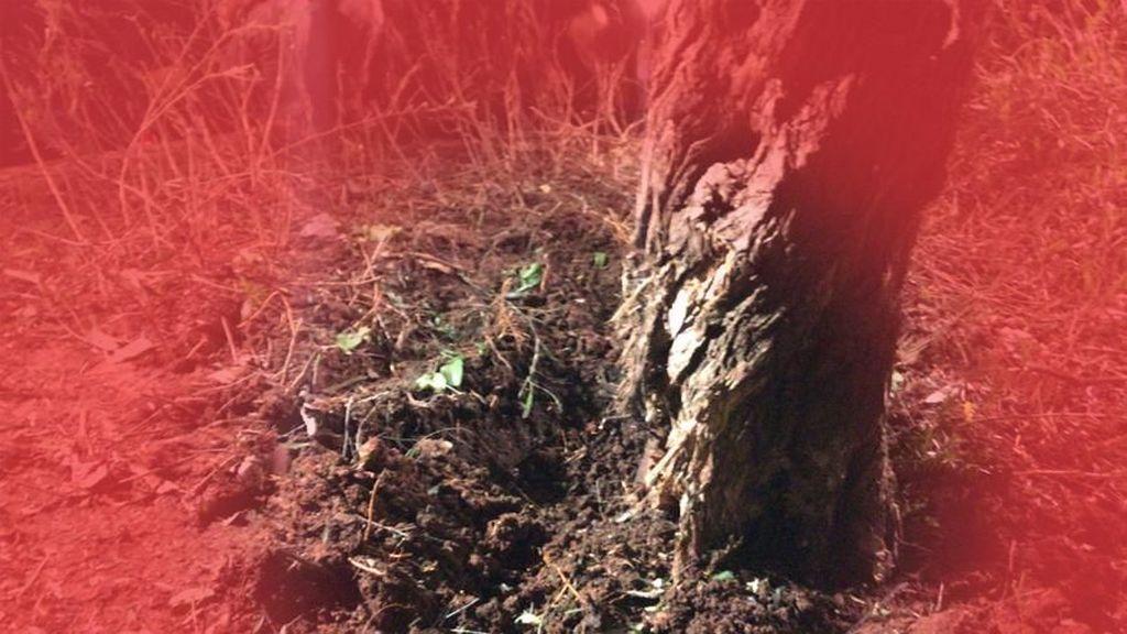 Ledakan Besar Terjadi di Kilang Minyak di Rumania