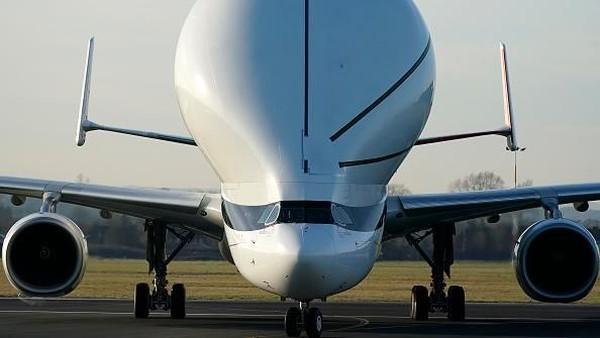 Airbus Beluga XL. Berat kosong: 125.000 kilogram. Panjang : 63,1 meter. Lebar sayap : 60,3 meter. Penerbangan pertama : 2020 (Foto: Getty Images)