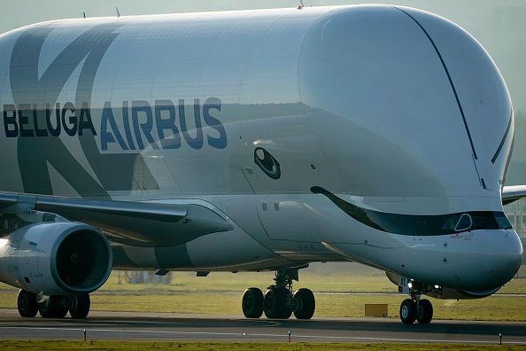 Airbus Beluga XL adalah pesawat transportasi raksasa yang dijadwalkan akan beroperasi pada tahun 2019 ini. Foto: Getty Images