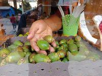 Jus Pinang Muda Aseuli di Aceh Ini Populer Sebagai  Penambah Vitalitas Pria