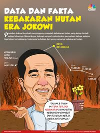 Maaf Pak Jokowi! Kebakaran Hutan Masih Terus Terjadi