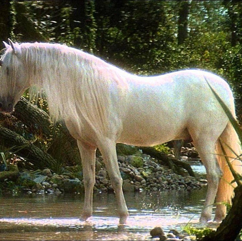 Ketika Kecerdasan Buatan Tulis Berita Penemuan Unicorn