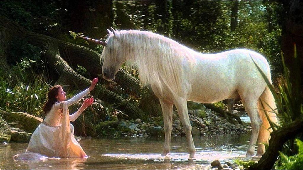 60-70% Orang RI Tak Tahu Unicorn