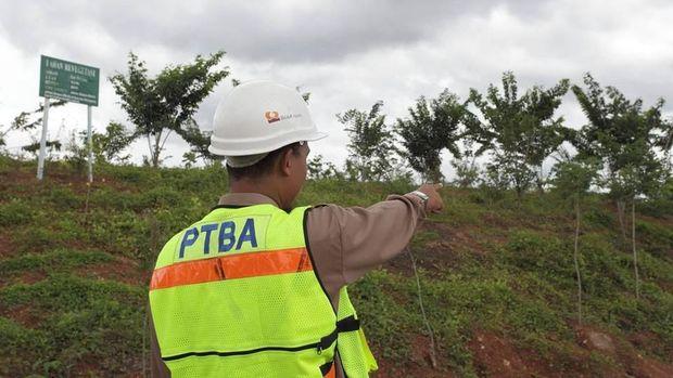 Menilik Bekas Tambang yang Jadi Hutan Kota Menurut Jokowi
