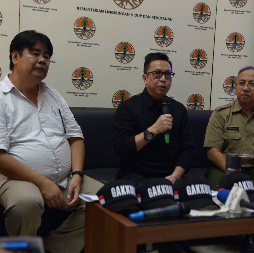 Guru Besar IPB: Kebakaran Hutan Masih Ada, Tapi Tidak Separah 2015