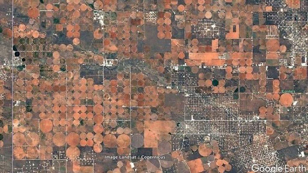 Google Earth, Ini 4 Langkah Mudah Menggunakannya