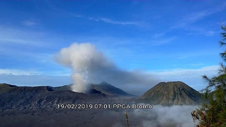 Bromo erupsi (Istimewa)