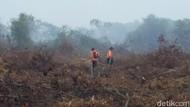 BNPB: 843 Ha Lahan di Riau Terbakar Selama 1 Januari-18 Februari 2019