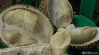 7 Durian Khas Polewali Mandar Ditampikan Dalam Tradisi Mappaende