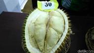 Ini Dia Gajah Mada, Durian Terbaik dari Purworejo