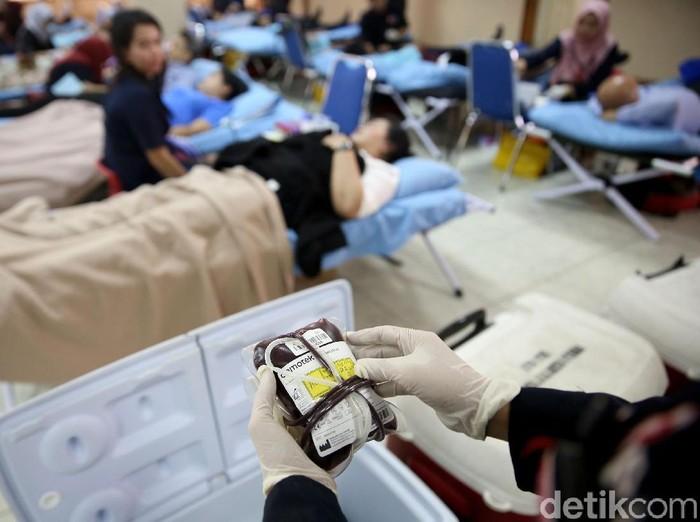 Tentang Donor Darah: 8 Syarat, Larangan, Cara, dan Manfaatnya /Foto: Rachman Haryanto