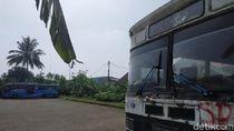 Bus PPD Tua, Menanti untuk Dimutilasi