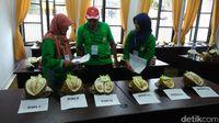 Perkenalkan! Ini 'Gajah Mada,' si Raja Durian Baru 2019 dari Purworejo