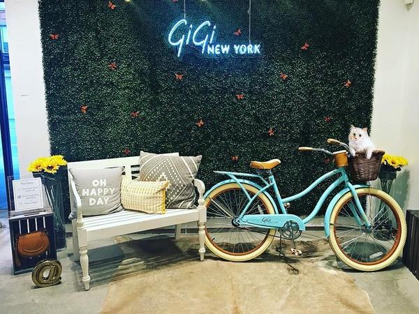 Setiap ada Karl dalam peluncuran suatu brand, Choupette pun kerap hadir. Ini saat acara fashion di New York (choupettesdiary/Instagram)