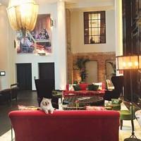 Tidur di dalam tas merk Chanel atau hotel mewah sudah biasa baginya. Ini saat ia menginap di Berlin (choupettesdiary/Instagram)