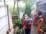 Ulat Gonggok yang Serang Rumah Warga Ragunan Disemprot Insektisida