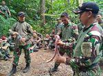 Menengok Prajurit TNI Bertahan di Alam Liar, Ulan Pun Jadi Santapan