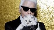 Liburannya Kucing Mendiang Karl Lagerfeld, Mevvah Banget!