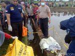 Mayat Bayi Ditemukan di Sawah, Sempat Tergilas Mesin Pembajak