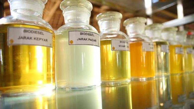 Biodiesel Foto: Istimewa/Kementerian Pertanian