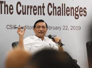 Luhut Sebut Keluarga Jokowi Tak Punya Bisnis di Pemerintahan
