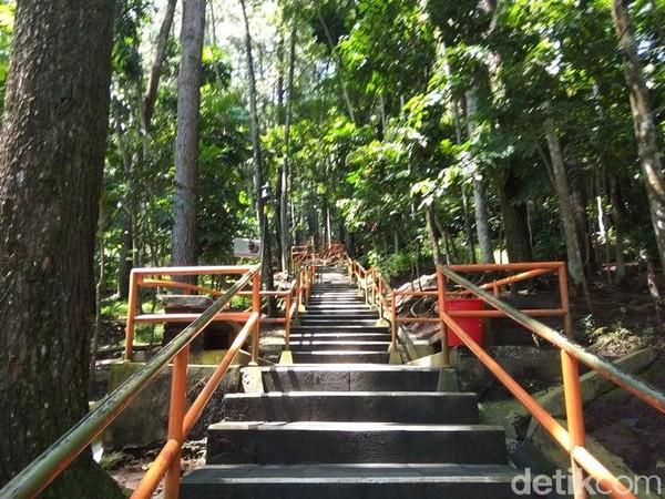 Berjalan menaiki ratusan anak tangga di bawah rerimbunan pohon pinus yang sejuk dan nyaman. (Eko Susanto/detikTravel)