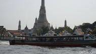 Ikan Dewa dari Sungai Chao Phraya, Bangkok