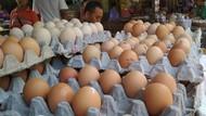 Harga Telur di 7 Pasar Naik, Mentan Lakukan Operasi Pasar