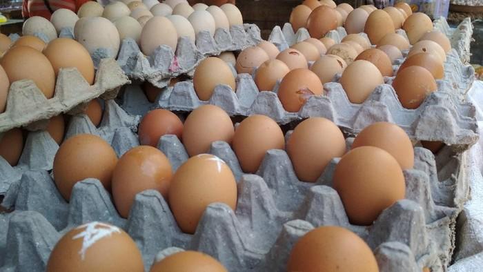Telur merupakan sumber protein paling mudah dan praktis (Foto: pool)