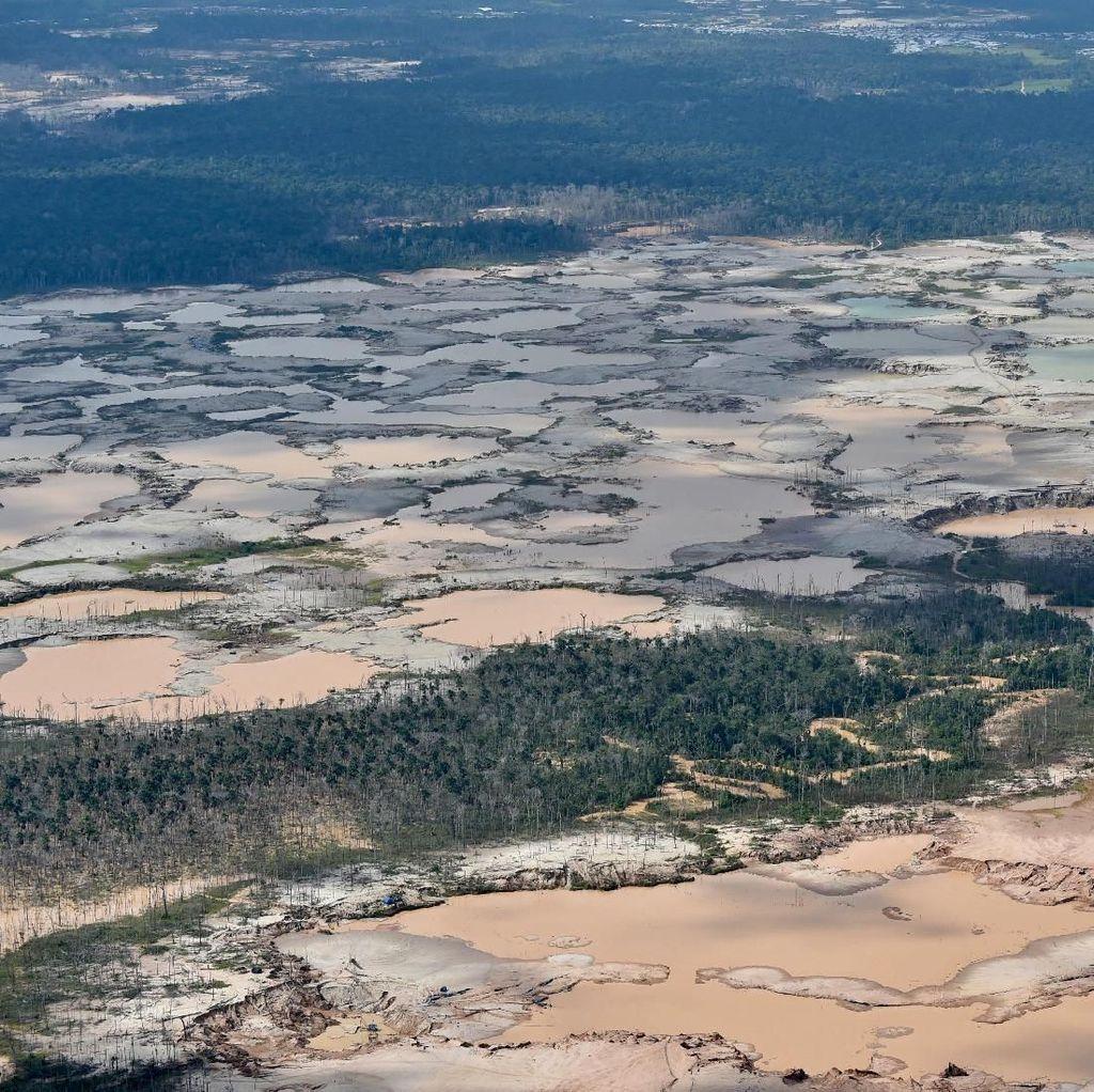 Parah! Hutan Amazon Gundul Akibat Penambangan Ilegal