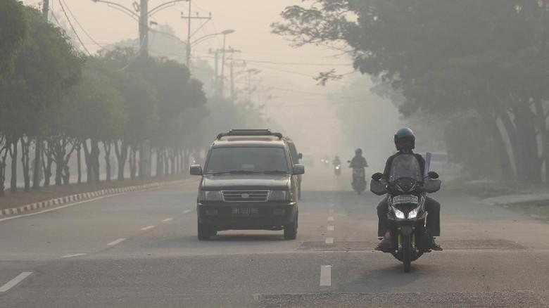 Mempawah Kalbar Diselimuti Kabut Asap Kebakaran Hutan