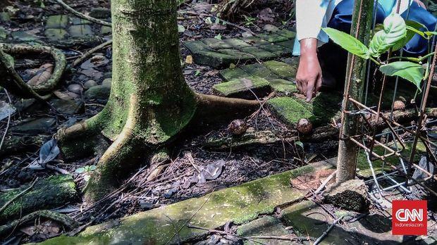 Ancaman Kepunahan Rafflesia di Depan Mata