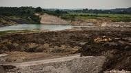 Greenpeace: Penegakan Hukum di Bidang Lingkungan Hidup Sulit