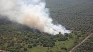 Api Mengamuk Pascadebat, Dumai-Bengkalis Siaga Asap